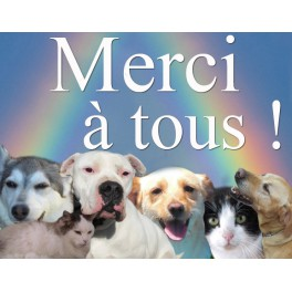 Don animaux 5€
