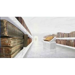 Bibliothèque des civilisations extraterrestres